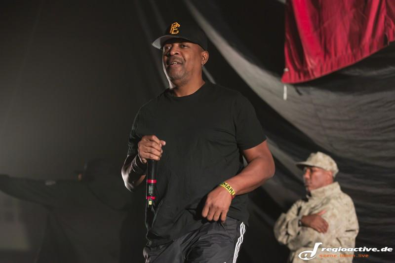 Public Enemy (live in Frankfurt, 2015)